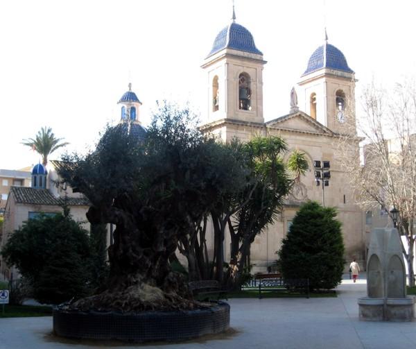 Vista plaza San Juan de Alicante